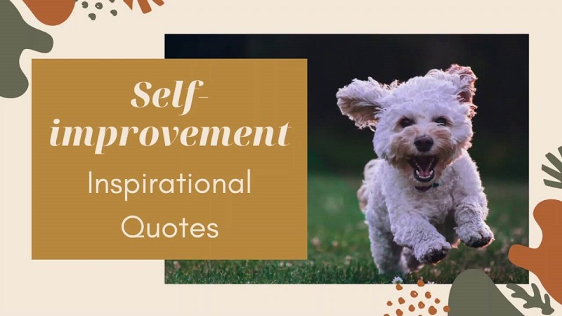 brainy self improvement quotes for good